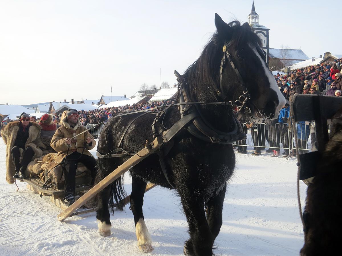 Hesten Guri Blessa med Jøran Lunde, Jeanette Øyan og Helge Bryhni. Foto: Karine Bogsti