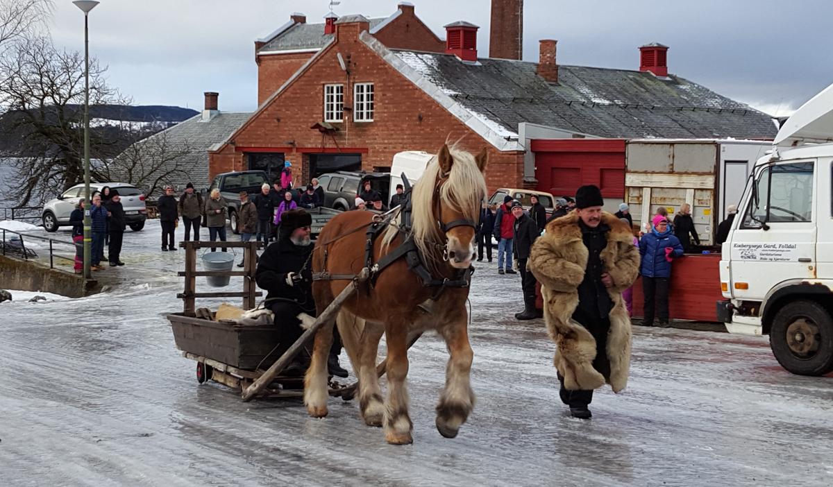 Nils Dahlen på tur fra Atlungstad til Furnes. Foto: Karine Bogsti