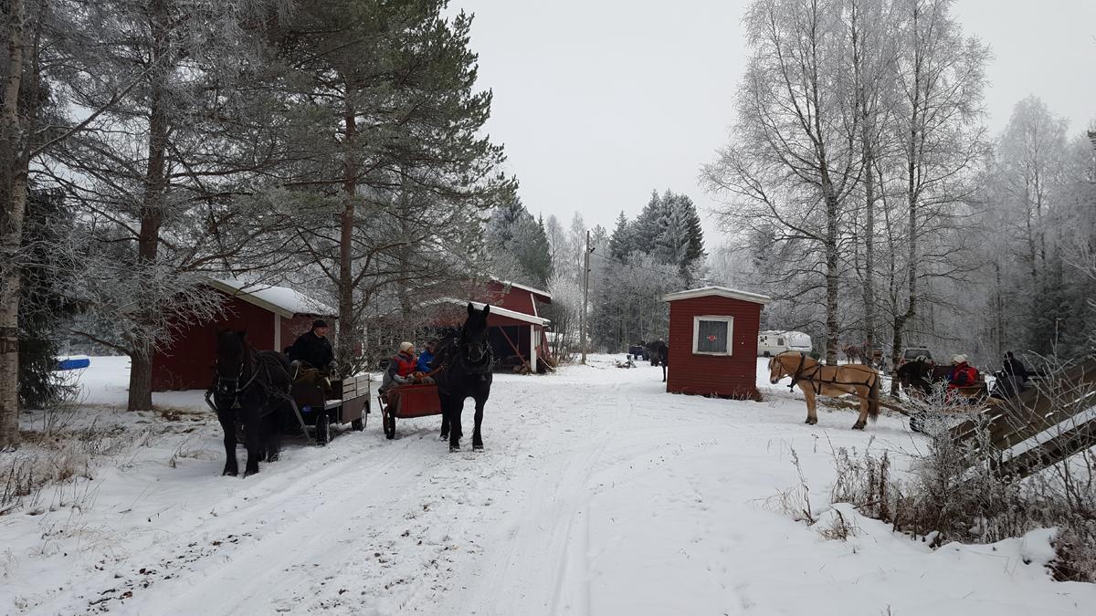 Pause på Furasaga i Nordbygda. Foto: Karine Bogsti